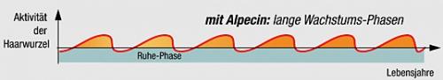 Mit Alpecin - Wachstumsphase - Diagramm